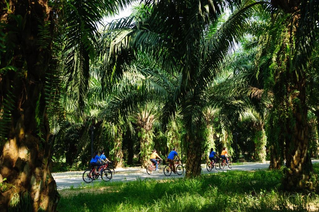 activity-cycling